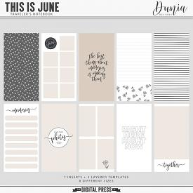 This is June | Traveler's Notebook