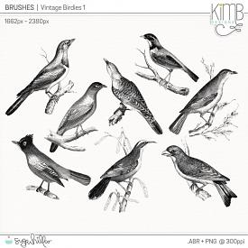 CU | Brushes : Vintage Birdies 1