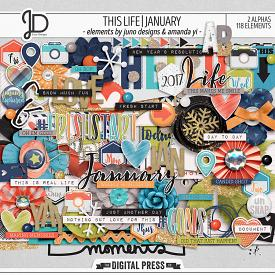 This Life | January - Elements